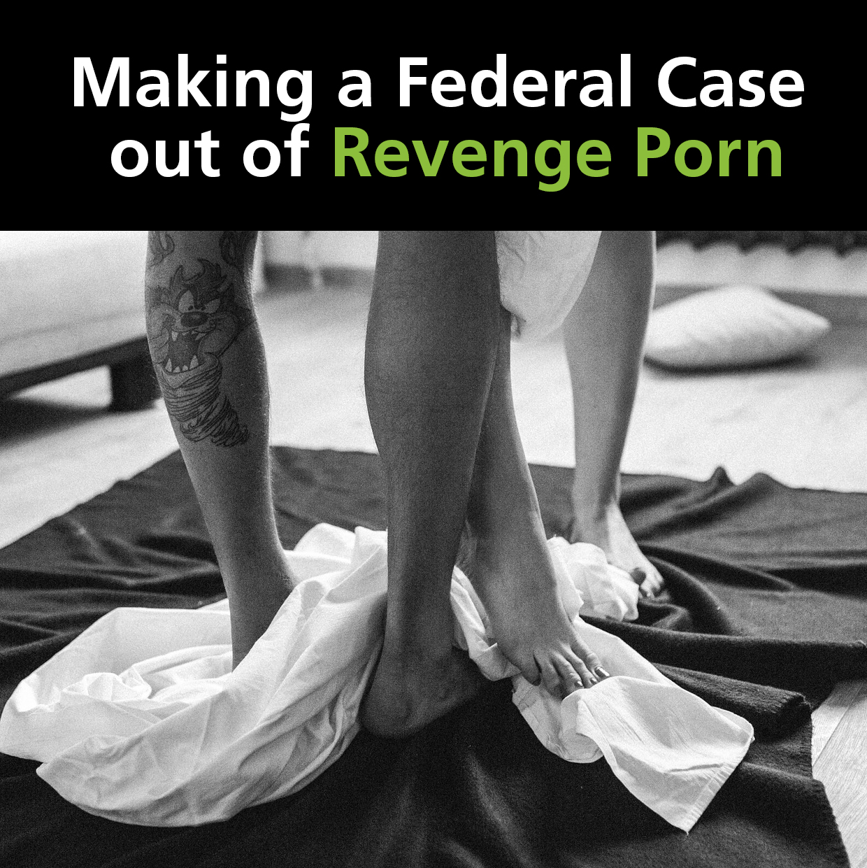 Revenge Porn Federal Case black